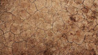 第二種特定有害物質及び第三種特定有害物質に係る土壌試料採取方法
